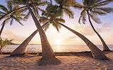 A béke szigete fali poszter