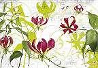 Absztrakt virágok poszter