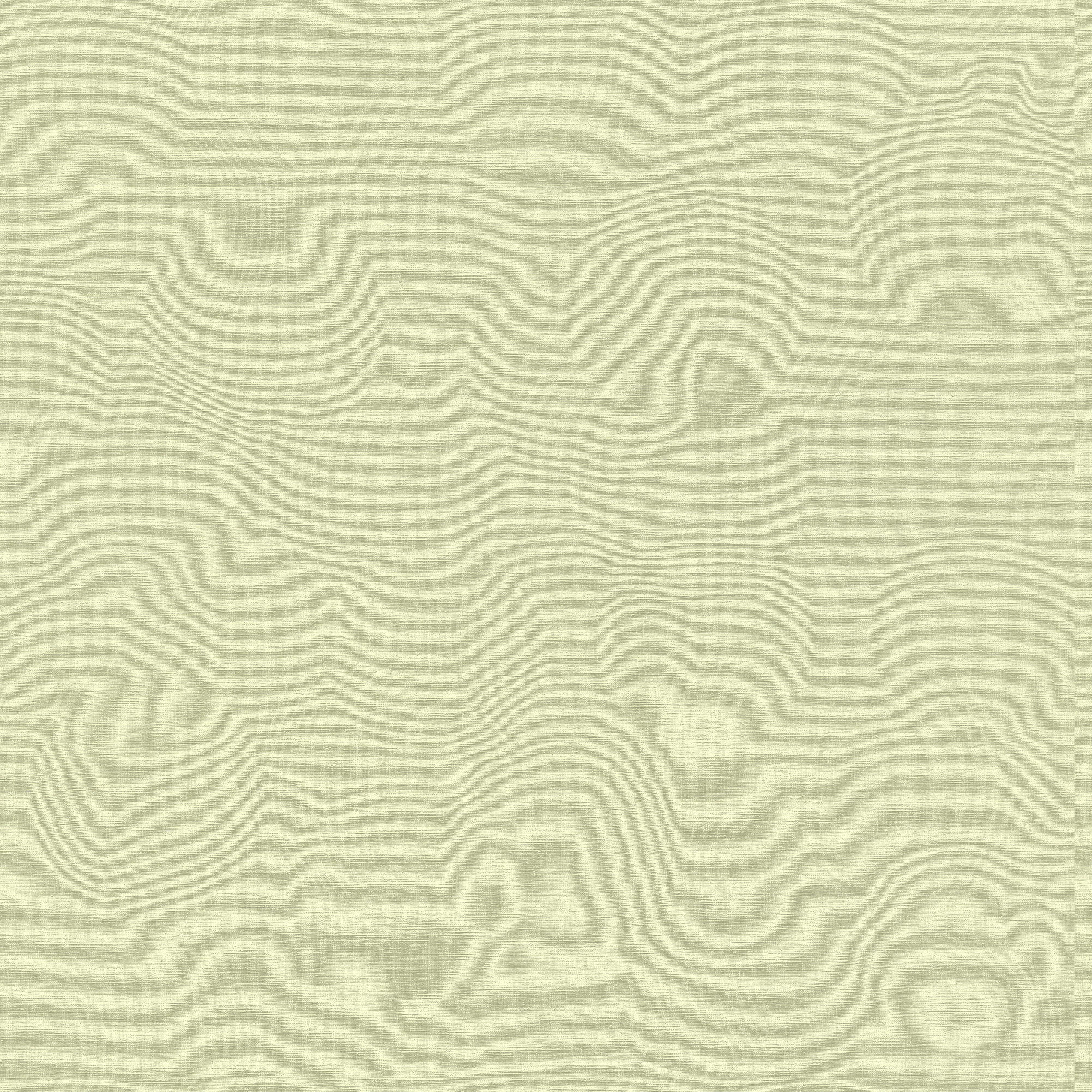 Egyszínű zöld tapéta bambino katalógus