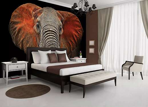 Fali poszter afrikai elefánt mintával
