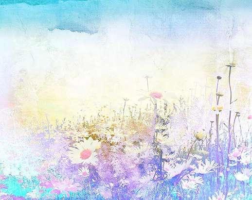 Fali poszter asbztrakt stílusban virágzó rét mintával