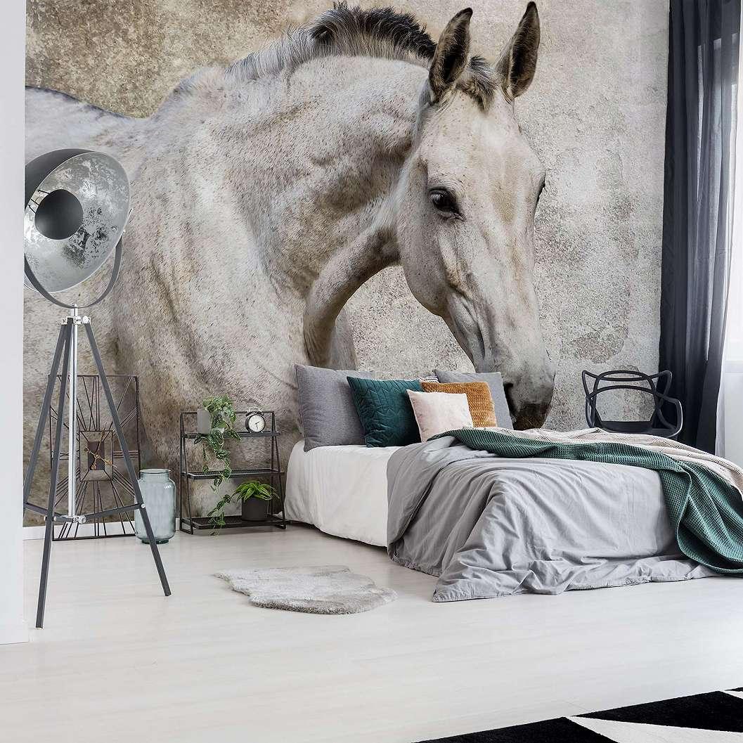Fali poszter fehér ló mintával