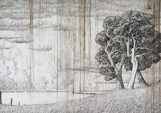 Fali poszter rajzolt erdei táj mintával
