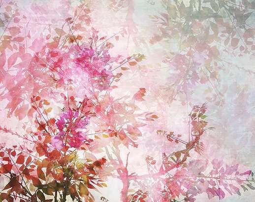 Fali poszter rózsaszín romantikus virág mintával