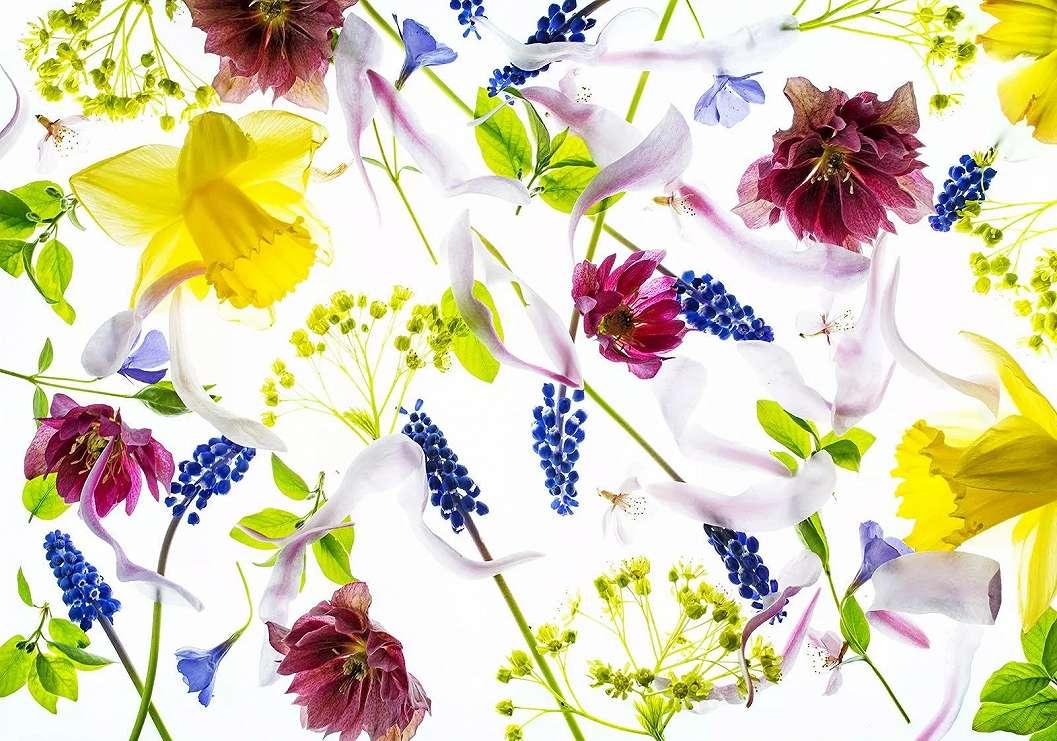 Fali poszter színes romantikus virág mintával