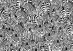 Fali poszter zabra mintával afrikai hangulatban