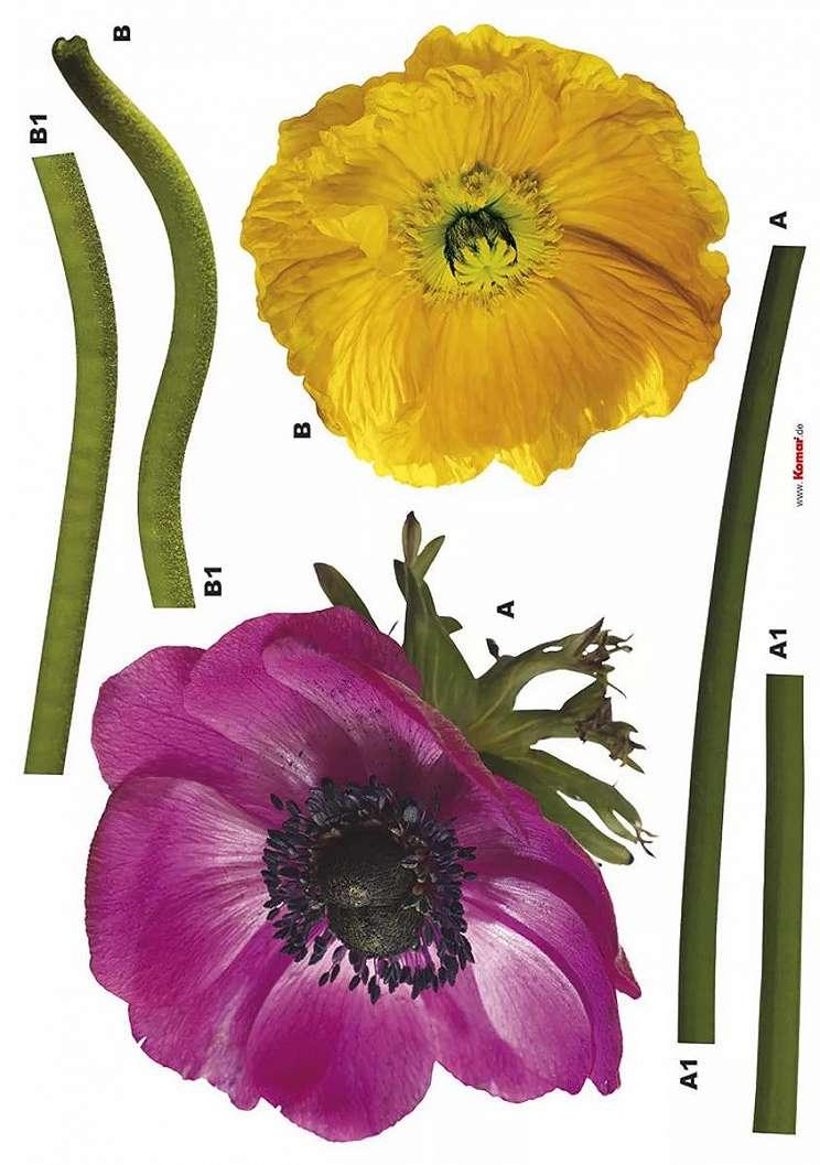 Falmatrica két színes virágmintával
