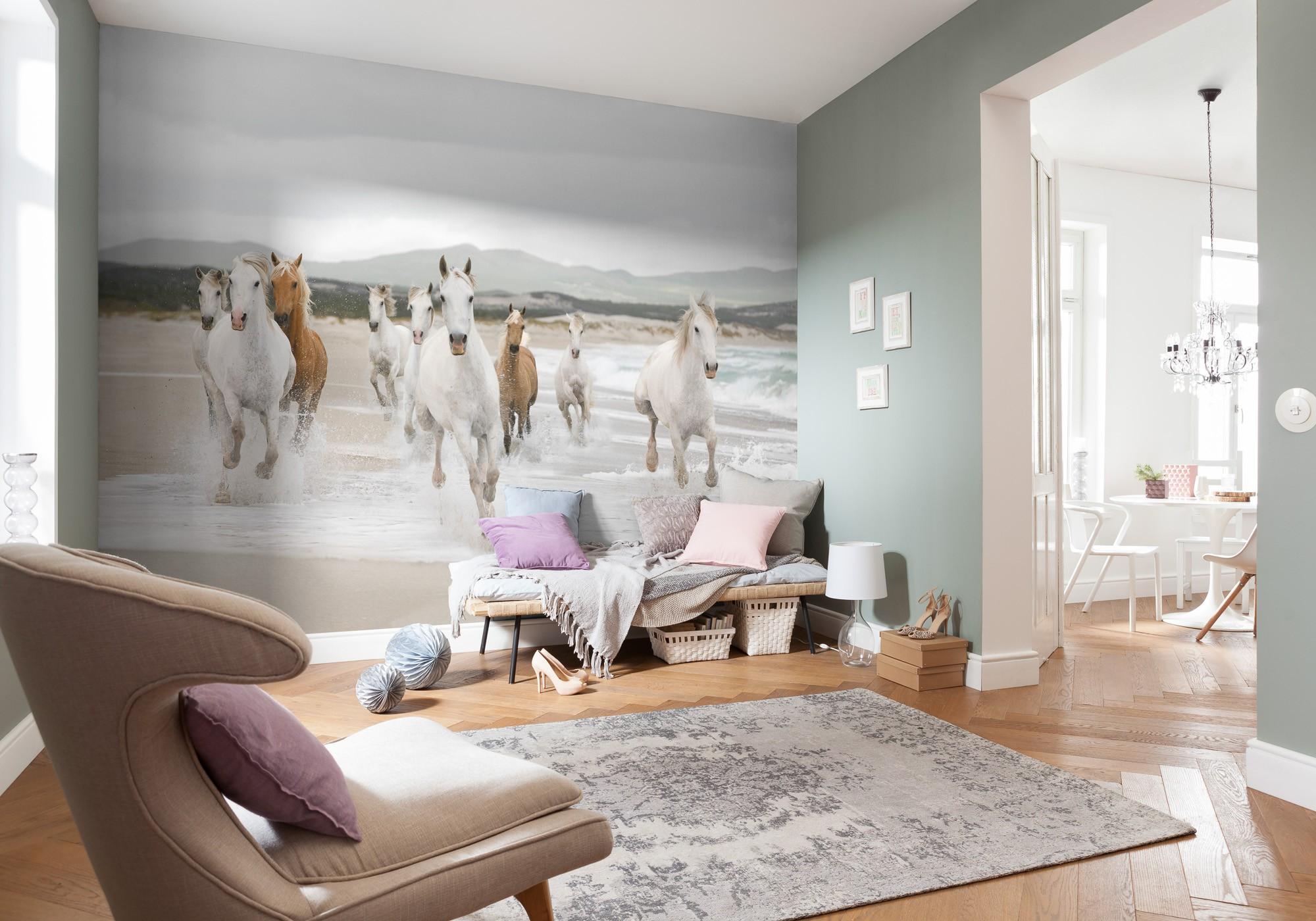 Fehér lovak fali poszter