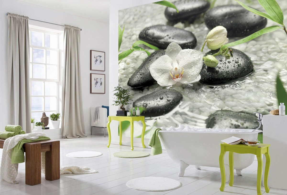 Fehér orchidea fali poszter