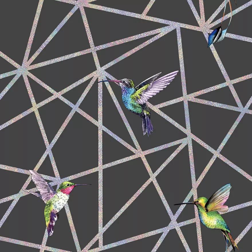 Fekete alapon kolibri mintás modern tapéta metál fényű csíkozott mintával