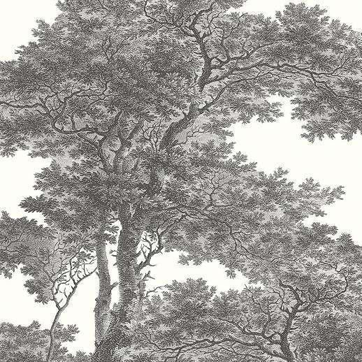 Fekete-fehér erdő mintás poszter