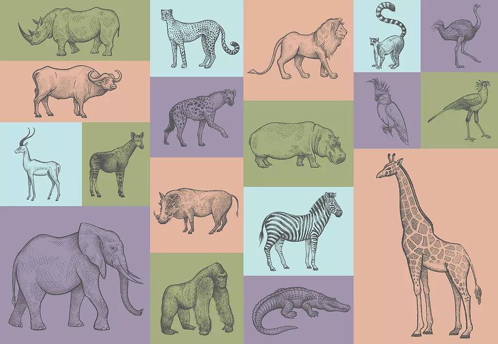 Gyerek fali poszter színes afrikai állat mintával