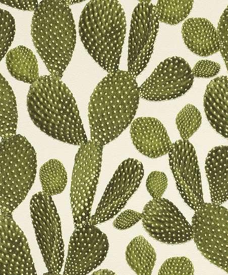 Kaktusz mintás tapéta