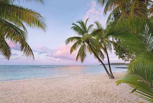 Karib sziget fali poszter
