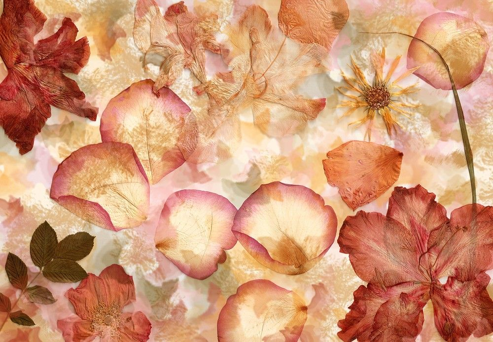 Kopottas virágok fali poszter