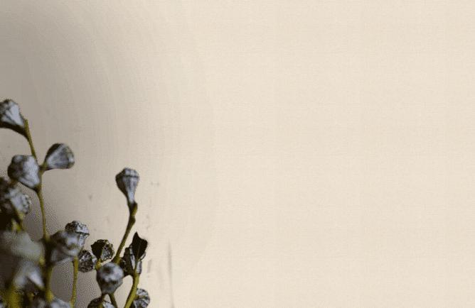 Krém szövet hatású tapéta