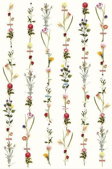Luxus fali poszter színes virágmintával fehér alapon