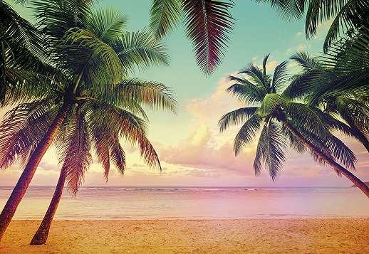 Miami tengerpart, pálmafák fali poszter