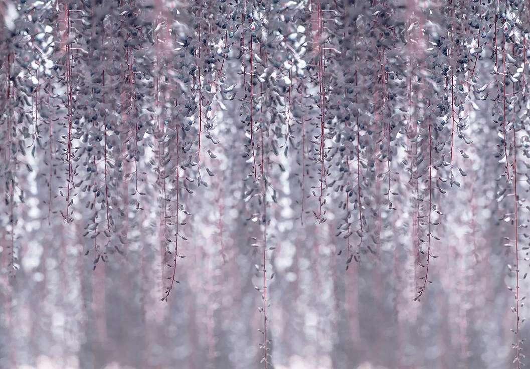 Modern inda mintás fali poszter lila színekkel