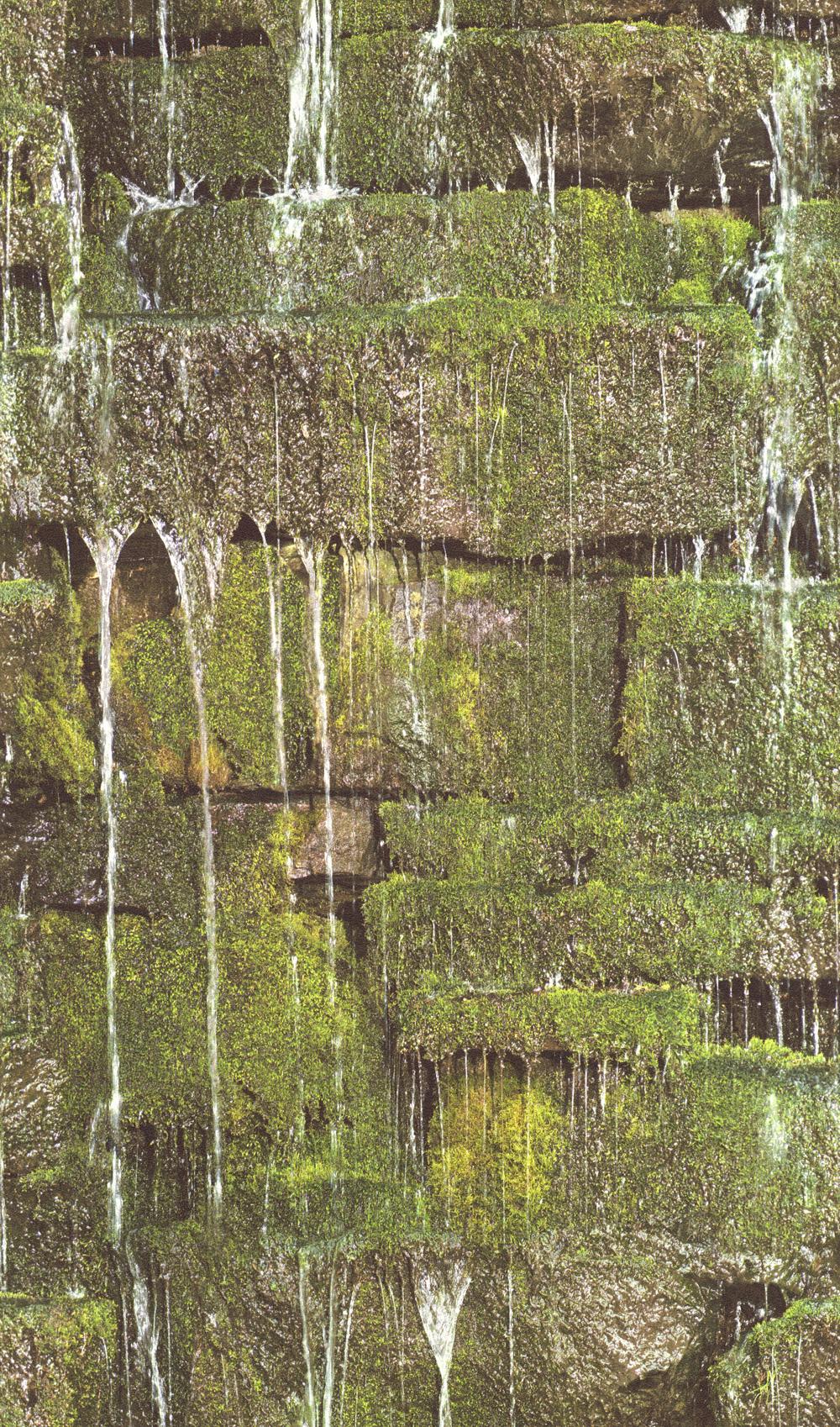 Mohás szikla hatású tapéta