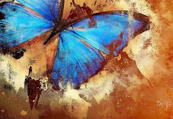 Művészi, absztrakt fali poszter pillangóval
