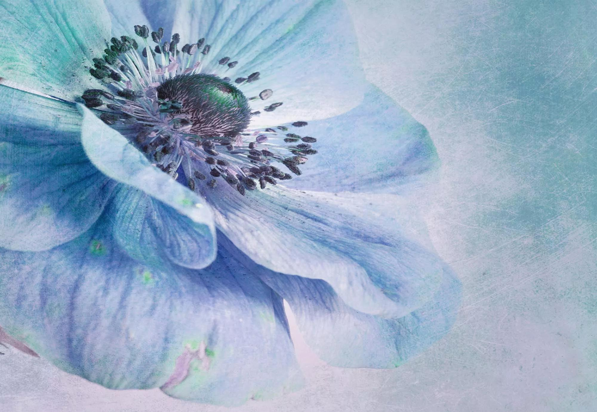 Óriás fali poszter kék virág mintával