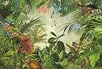 Őserdő, dzsungel fali poszter