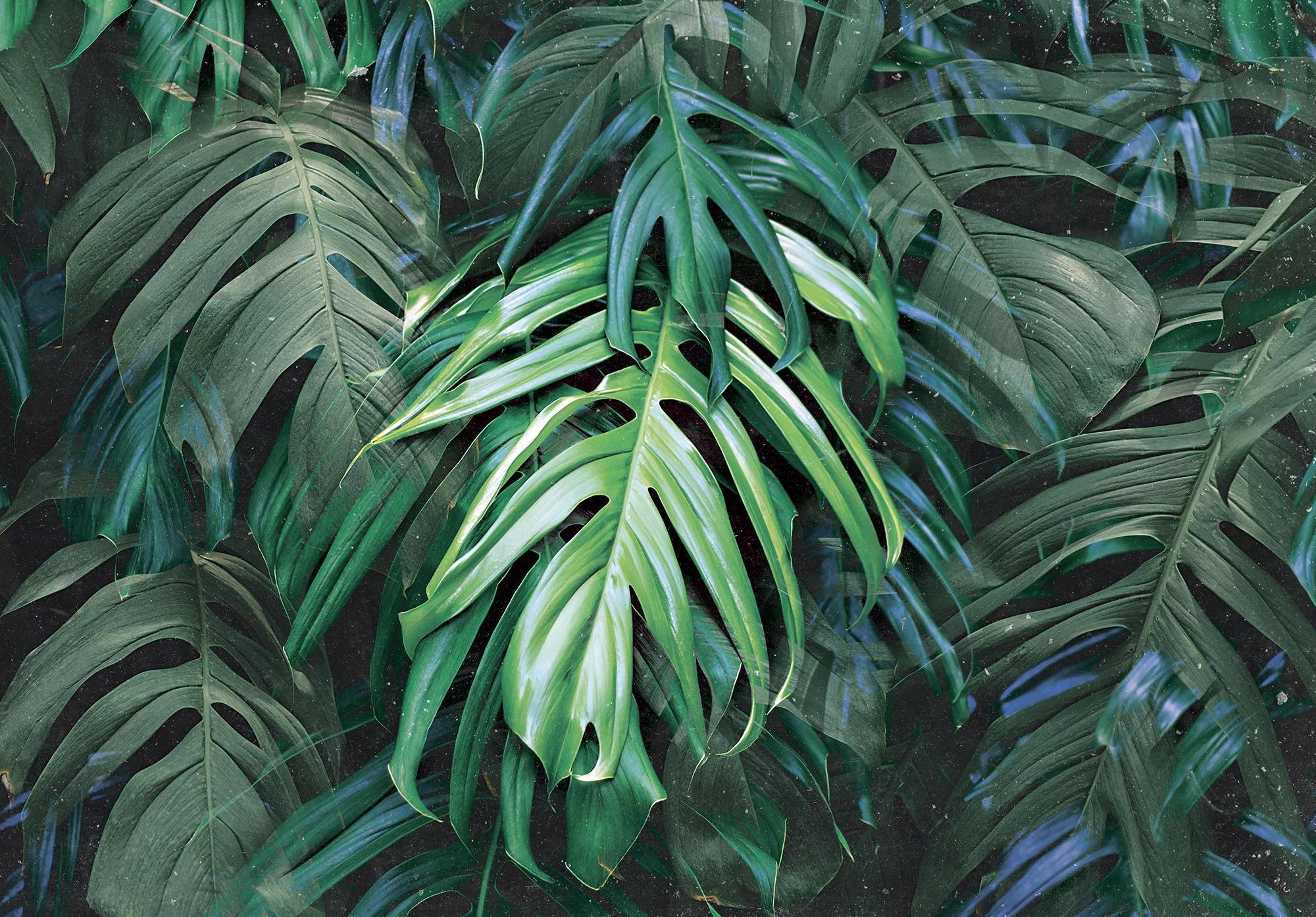 Pálmalevél mintás zöld óriás fali poszter koptatott hatással