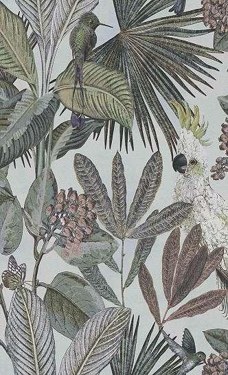 Papagály, trópusi madás mintás trendi vlies tapéta