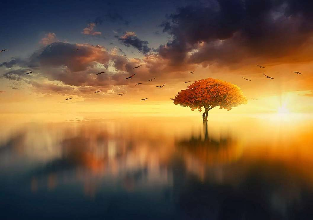 Romantikus naplemente fali poszter
