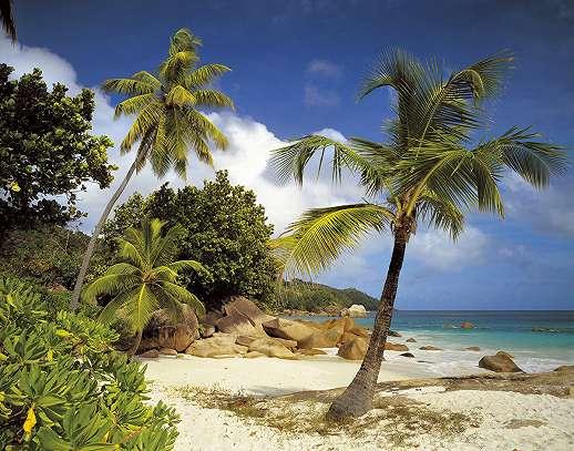 Romantikus trópusi tengerpart
