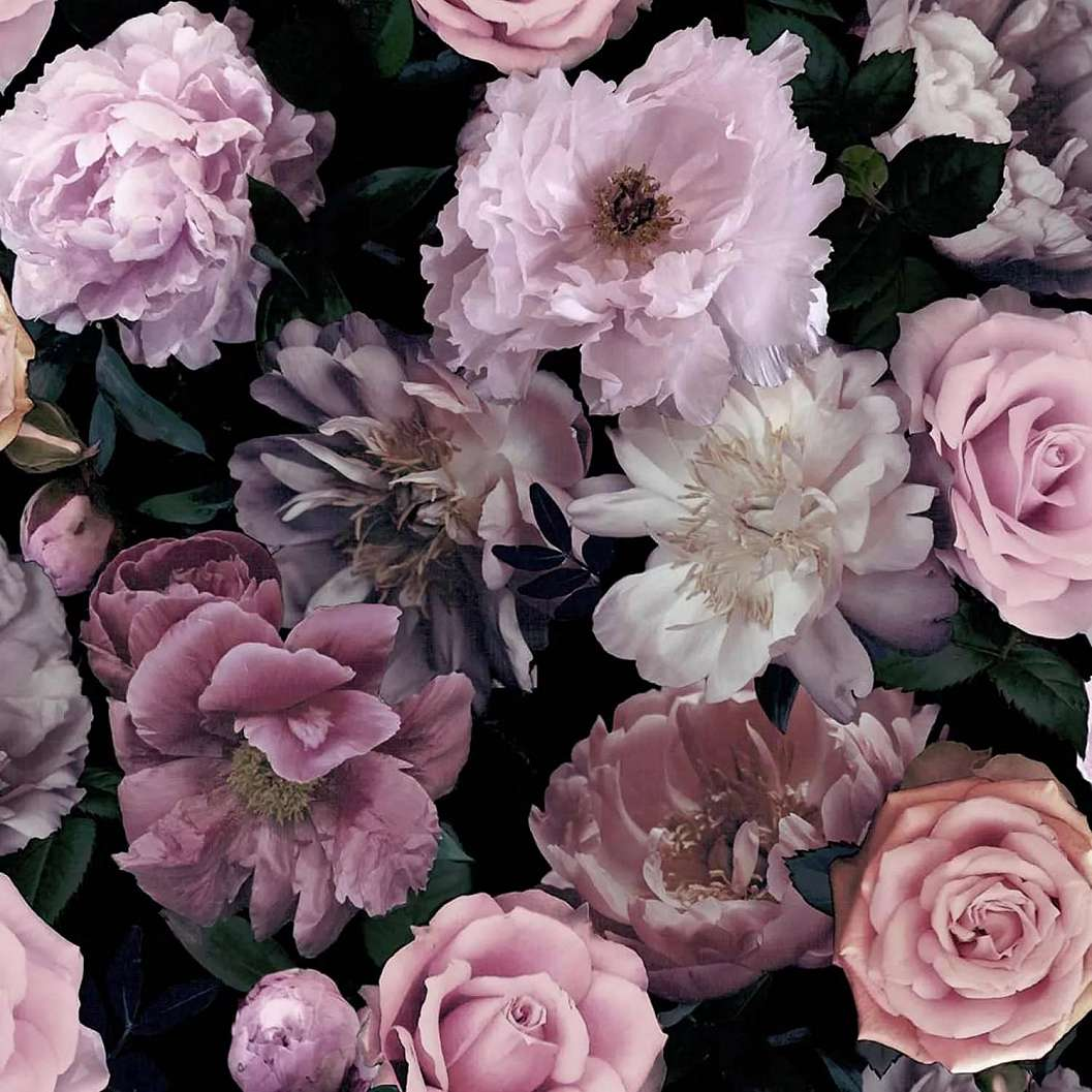 Rózsaszín, lila rózsa mintás tapéta