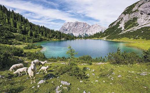 Seebensee-tó osztrák Alpokban fali poszter