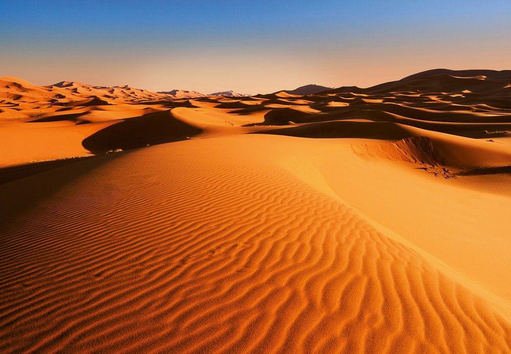 Sivatagi látkép fali poszter