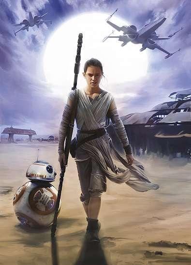 Star Wars fali poszter