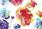 Színes festett hatású virág mintás fali poszter
