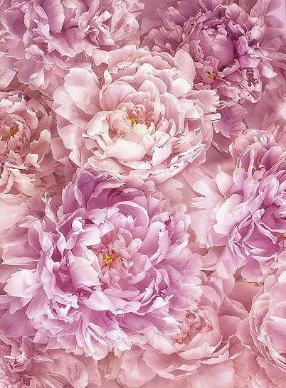 Színes virágmintás fali poszter
