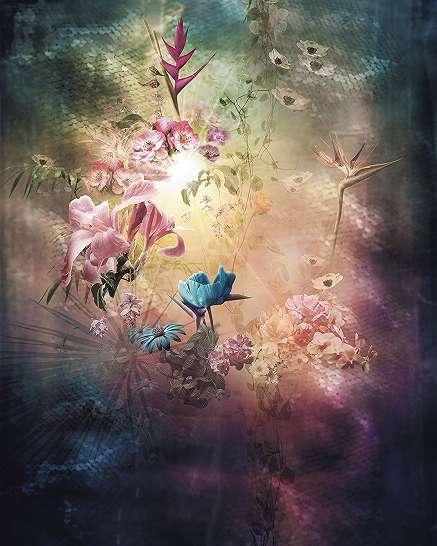 Színes virágok napfényben fali poszter