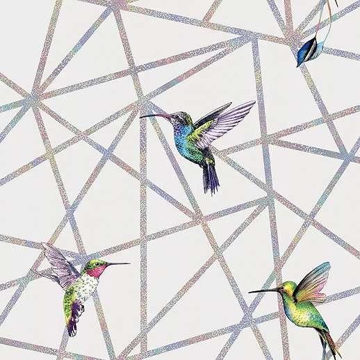Szürke alapon kolibri mintás design tapéta szivárvány színű csíkokkal