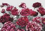 Szürke, bordós-rózsaszínes virágmintás fali poszter