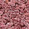 Tapéta rózsa mintával, rózsaszín rózsákkal