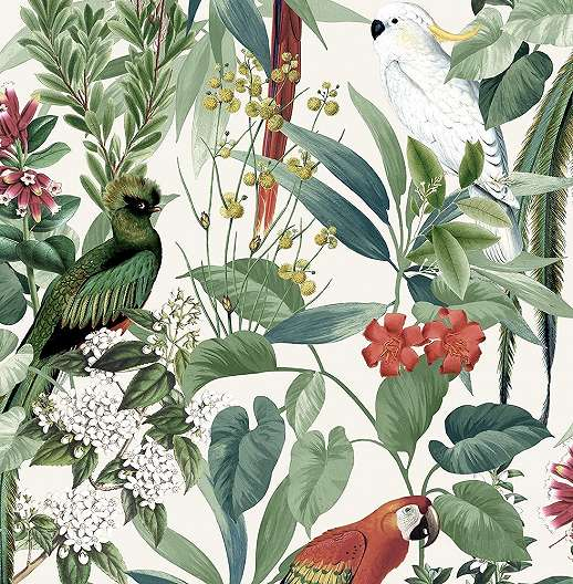 Tapéta trópusi mintás, madár, pálma mintával