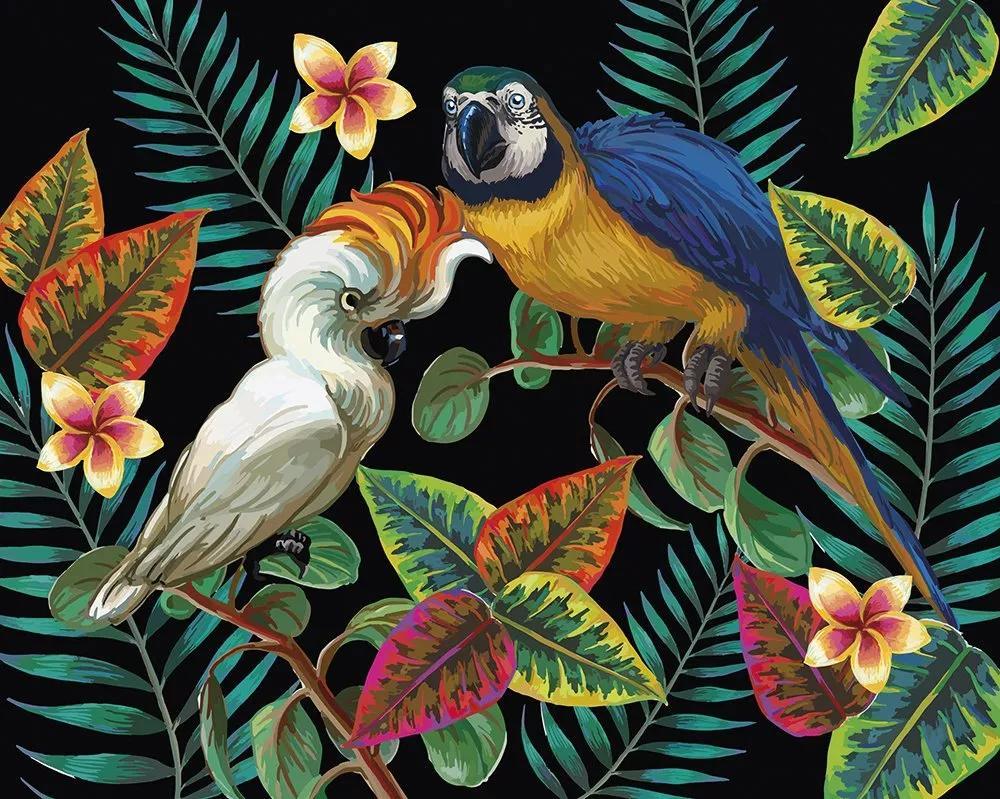 Trópusi hangulatú papagály mintás óriás vlies fali poszter