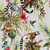 Trópusi hangulatú tapéta ezüst alapon, majom, kolibri és pálmalevél mintával