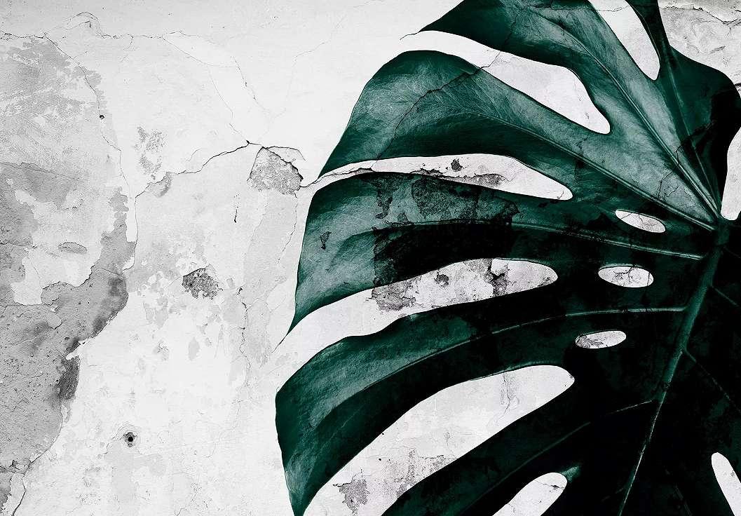 Trópusi levélmintás fali poszter zöld levél mintával