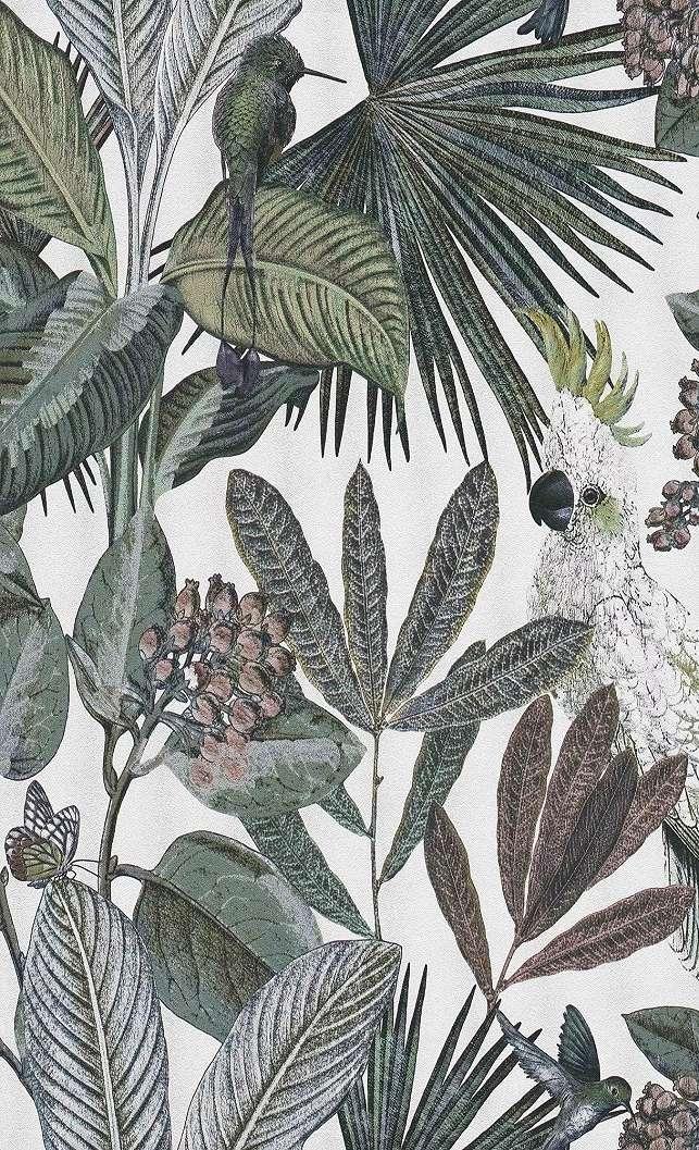 Trópusi növény mintás tapéta, papagály, kolibri mintával fehér alapon