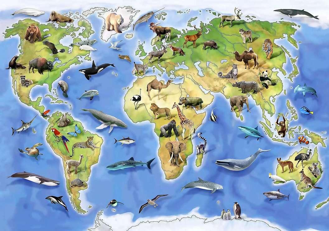 Világtérkép fali poszter gyerekszobába állat mintákkal