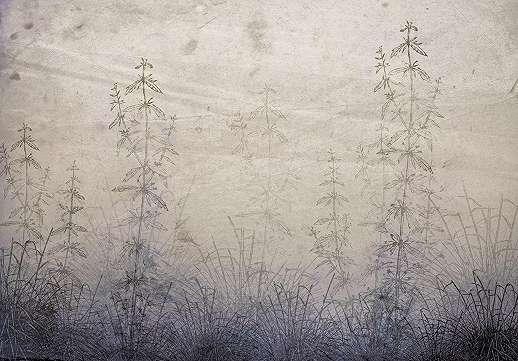 Vintage hangulatú mezei virágmintás fali poszter