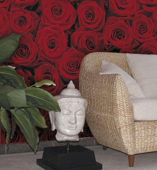 Vörös rózsák fali poszter