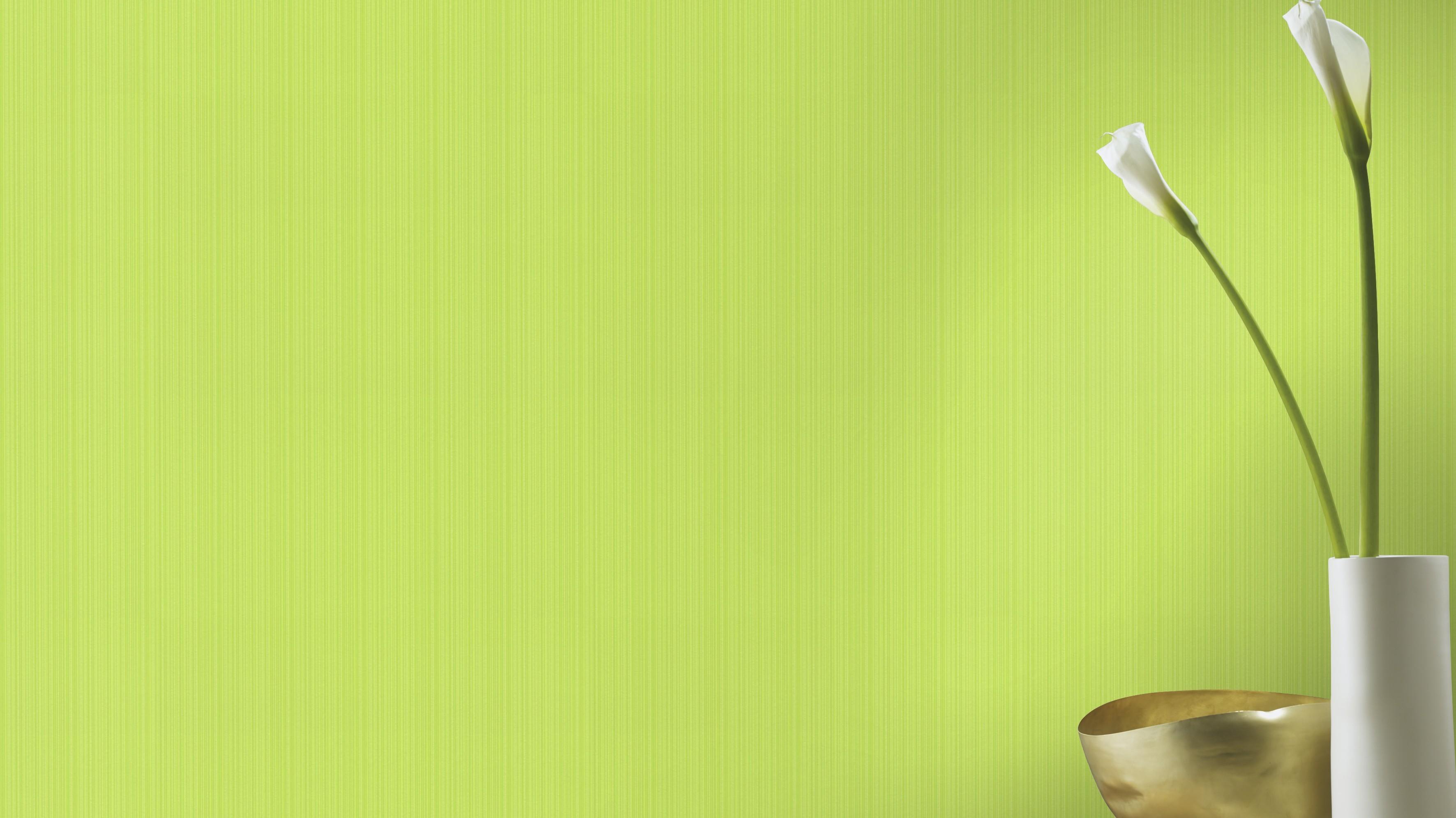 Zöld egyszínű csíkos retro tapéta